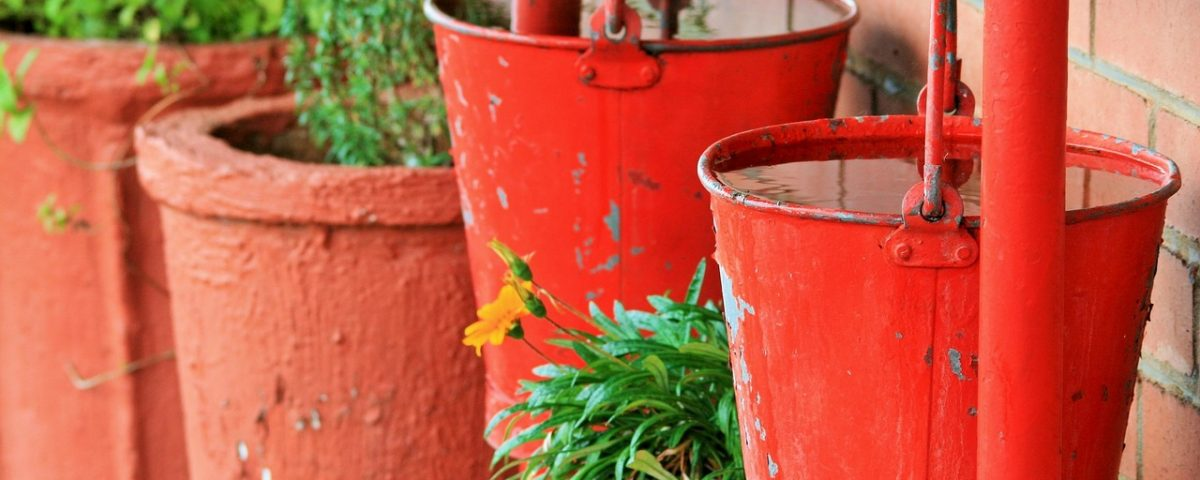 7-eco-friendly-lawncare-tips