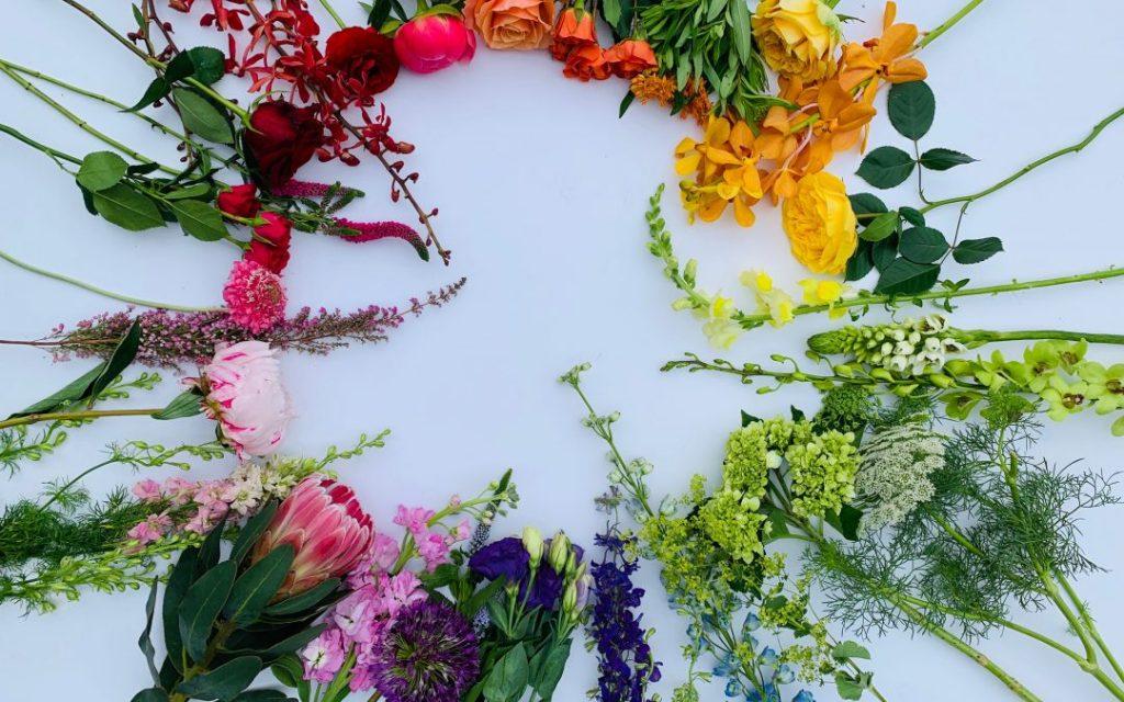 Floral Colour Wheel