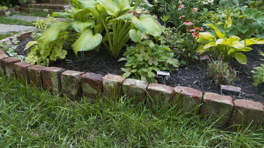Unique Garden Border Ideas